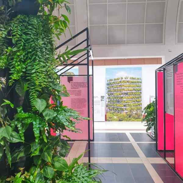 Ausstellungsraum mit Pflanzen und Infotafeln